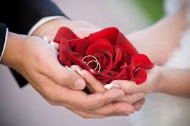 wedding flowers groom flowers wedding rings flowers groom nature