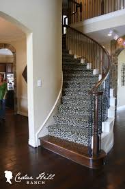 house beautiful cheetah print decoration ideas cheetahhow cool