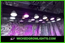full spectrum light for plants best led grow light spectrum