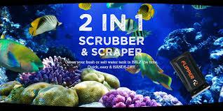 flippercleaner com u2013 flipper magnetic aquarium cleaner your last