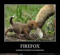 Running Baby Meme - firefox very demotivational demotivational posters very