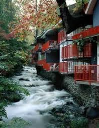 the 30 best gatlinburg tn family hotels kid friendly resorts