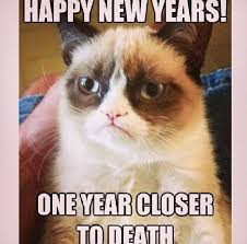 Grumpy Cat New Years Meme - grumpy cat happy new years one year closer to death funnies