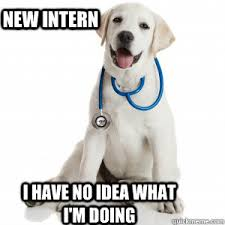 Dog Doctor Meme - new intern i have no idea what i m doing doctor dog meme quickmeme