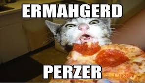 Pizza Meme - i can has cheezburger pizza funny animals online cheezburger