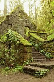 old moss woman u0027s secret garden home facebook