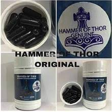 hammer thor italy price harga in malaysia