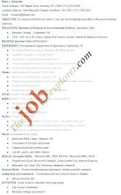 Example Skills Resume by Environmental Skills Resume Idr Group