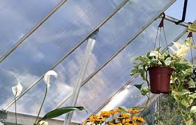 8 X 12 Greenhouse Kits Essence 8 X 12 Hobby Greenhouse Kit Pol Hg5812 1 449 00