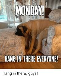 Hang In There Meme - munda hang in there everyone hang in there guys meme on