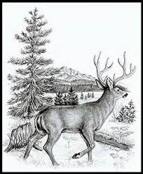 440 best pyrography designs images on pinterest pyrography