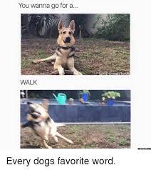 Walking Memes - 25 best memes about walking meme walking memes