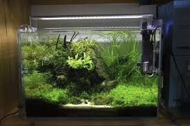Aquascape Lighting Chihiros Led A501 Lighting System A Series 50cm