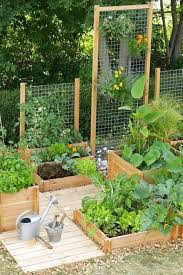 kitchen gardening ideas best 25 vegetables garden ideas on when to plant