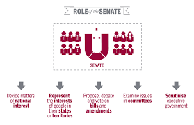 What Does Colour Mean Senate Learning Parliamentary Education Office Senate