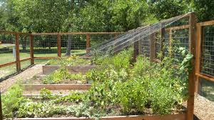 rollingwood community education garden there u0027s a saying in the