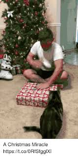 Christmas Miracle Meme - a christmas miracle httpstco0rfsfgglxi christmas meme on me me