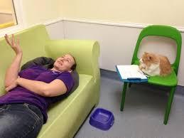 Therapist Meme - therapist cat cats know your meme