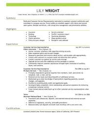 summary on a resume exles 2 best resume exles for customer service exles of resumes