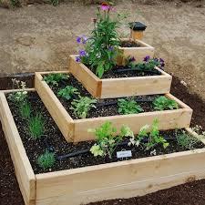 home vegetable garden plans vegetable garden designs simple vegetable garden ideas at home