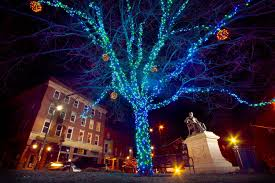 how to put lights on a tree outside contact morel communications