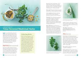 natural antibiotics and botanical treatments heal your body heal
