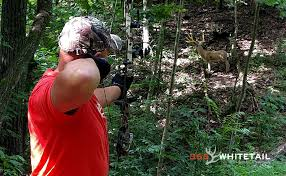 Bow Hunting From Ground Blind 10 Early Season Bowhunting Mistakes 365 Whitetail
