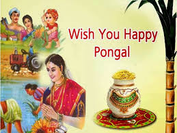 Pongal Invitation Cards 35 Adorable Pongal 2017 Wish Pictures And Images