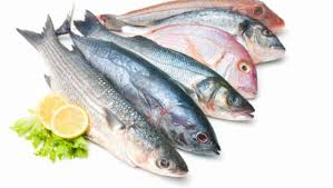 pesci alimentazione omega 3 nel pesce le variet罌 pi羯 ricche