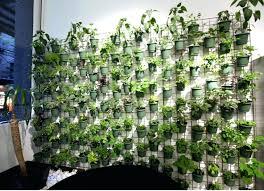 vertical indoor garden living wall planters vertical wall garden