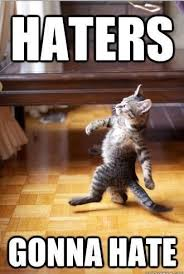 Hehe Meme - cat memmmmmes cats amino