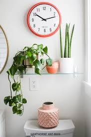 best light for plants bathroom supreme low light bathroom plants photos concept best for
