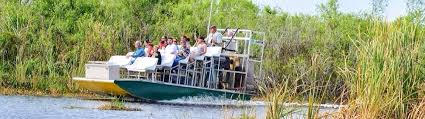 fan boat tours florida see the florida everglades at loxahatchee everglades tour