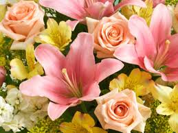 Flowers For Mum - which type of flower is your mom playbuzz
