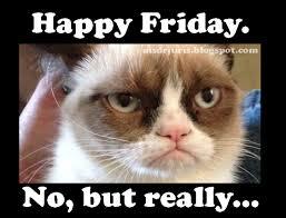 Grumpy Cat Friday Meme - grumpy cat friday meme 28 images lfs forum see any fireballs