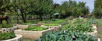 Vegetable Garden Restaurant by Coltivazione Innovativa E Biologica Agriturismo La Borina