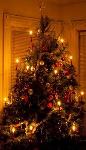 fashioned tree lights decor