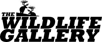 Deer Hide Tanning Companies The Wildlife Gallery Tannery U2014 Synthetic Tan