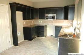 enjoy cooking in this kitchen with distressed black cabinets and