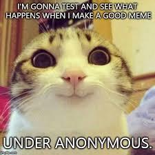 Good Cat Meme - smiling cat meme imgflip