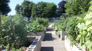 Types Of Community Gardens - community foundation fund community giving programs