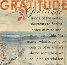 Gratitude Meme - gratitude griefandmourning com