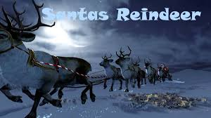 what do santa u0027s reindeer eat science technology and health
