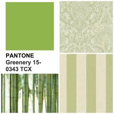pantone colour of the year 2017 greenery graham u0026 brown uk
