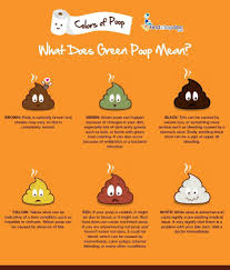 what do different colors mean different colors of poop what could green poop mean
