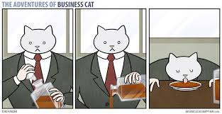 Business Cat Memes - the adventures of business cat whiskey business cat