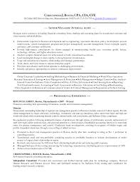 Commercial Manager Resume Sample Director Of Finance Resume Financial Controller