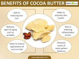 Signs Of Hair Loss Male 6 Surprising Cocoa Butter Benefits Organic Facts
