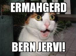 Bon Jovi Meme - bon jovi cat weknowmemes generator