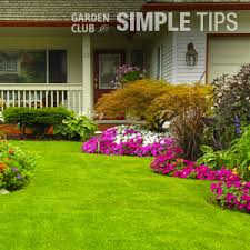 home depot hyannis ma black friday deals roundup weed killer lawn care the home depot